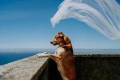 fotografo-de-casamento-portugal-15